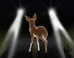 deer_in_the_headlights_by_clubpenguinsandwich-d3l9bsx