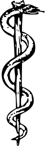 340px-Rod_of_Asclepius2.svg